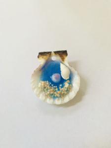 星の砂と本物の貝殻で